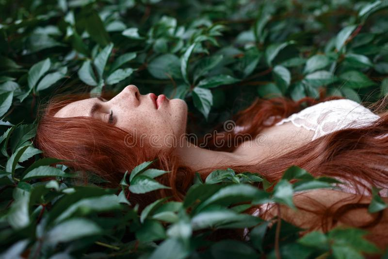 The girl with the red hair lies among the green leaves royalty free stock photography
