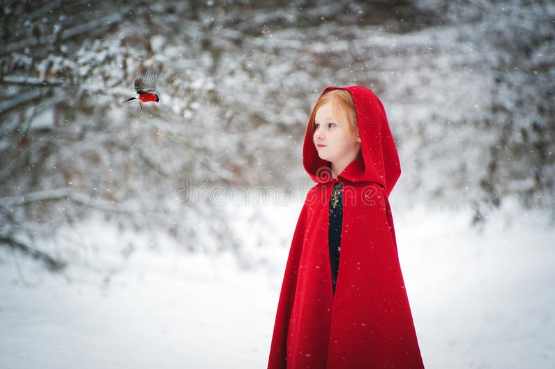 Girl in a red raincoat with a bird stock photography