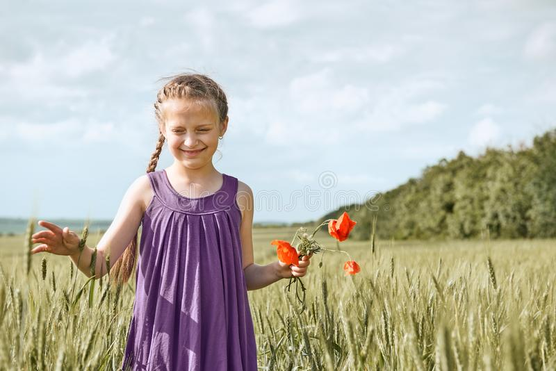 Girl with red tulip flowers posing in the wheat field, bright sun, beautiful summer landscape stock images