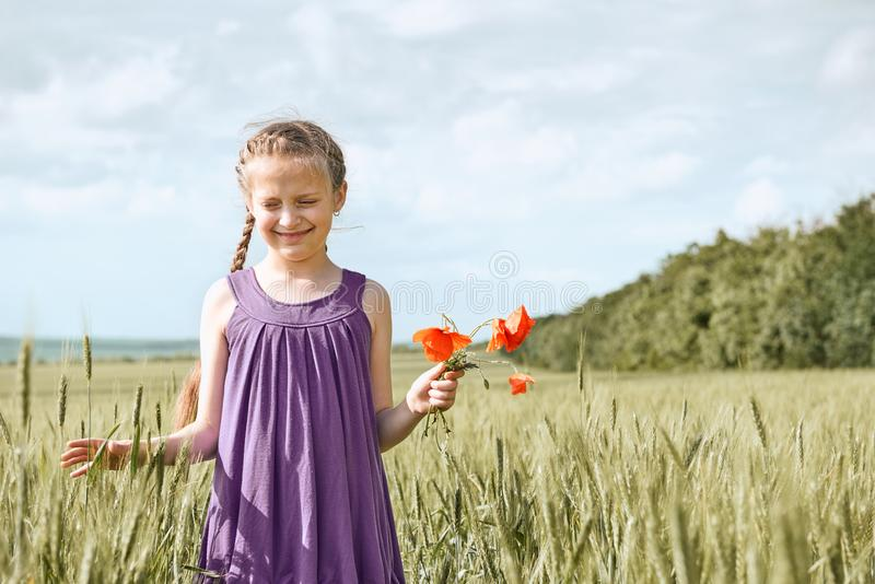 Girl with red tulip flowers posing in the wheat field, bright sun, beautiful summer landscape stock photo