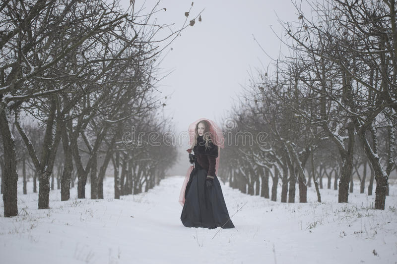 Girl in a red veil on the snow in the winter.  stock image