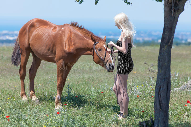 Girl reins of brown horse. Blonde woman, gelding and tree. Young blonde woman in polka-dot dress with brown horse stock photo