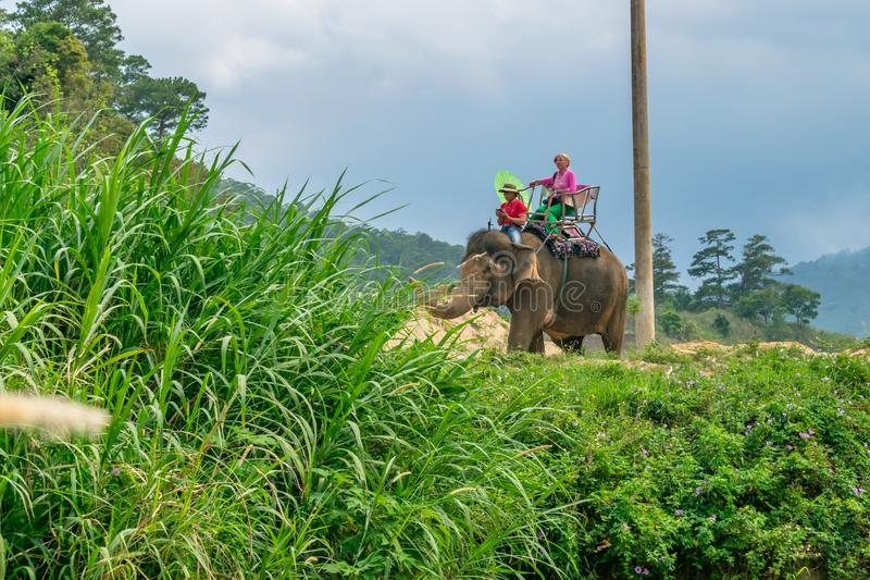 DALAT, VIETNAM - APRIL 15, 2019:Girl ride an elephant in the jungle in Dalat. Girl in national clothes rides an elephant in the junglein Dalat royalty free stock image