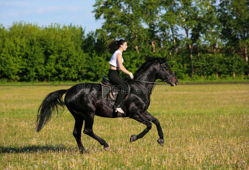 Girl ride gallop horseback on a field royalty free stock photos