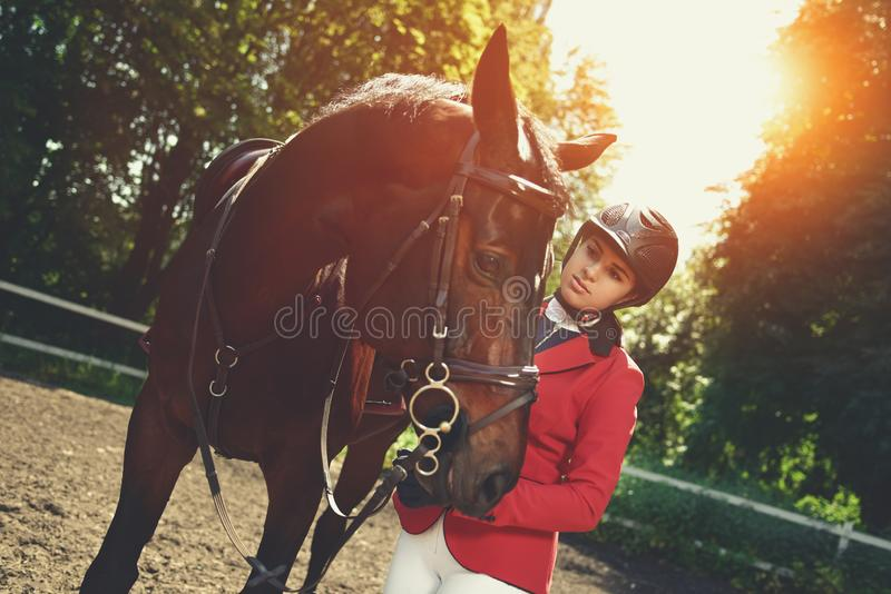 Girl rider and a horse posing in spring forest.She loves the animals and joyfully spends her time in their environment. A young girl talking and takes care of stock photo