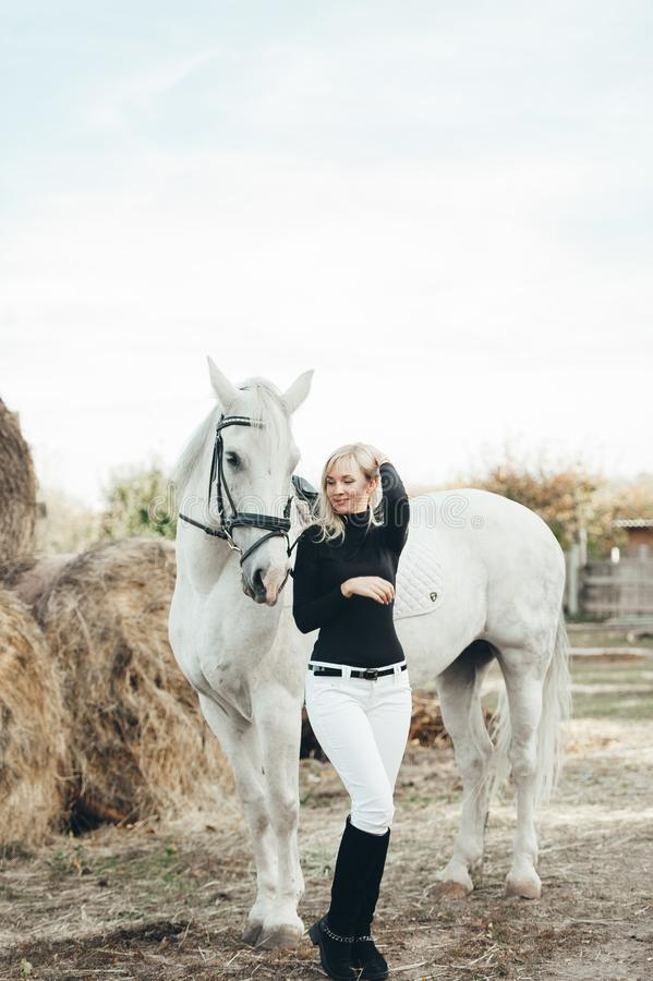 Girl rider stands next to the horse in the farm. Fashion portrait of a woman with white horse stock photo