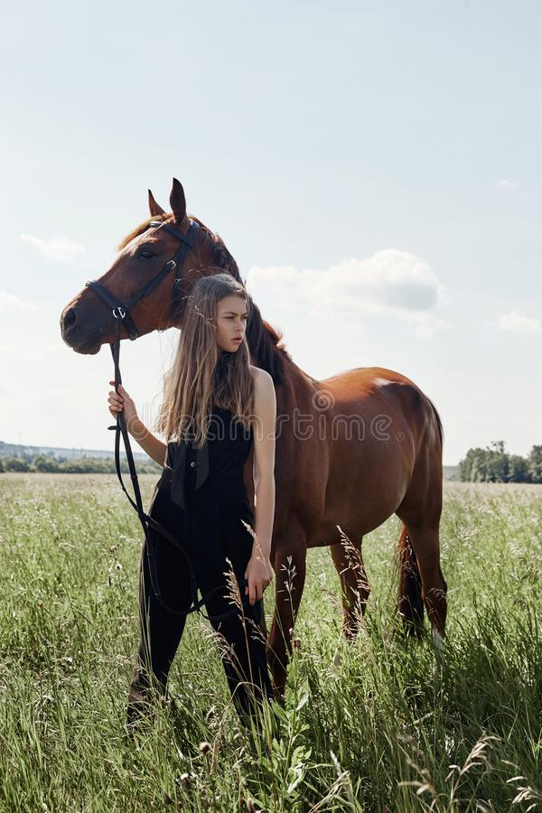 Girl rider stands next to the horse in the field. Fashion portrait of a woman and the mares are horses in the village in the grass stock images