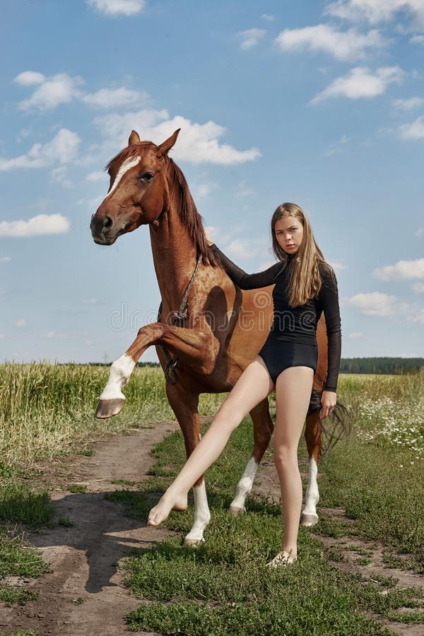 Girl rider stands next to the horse in the field. Fashion portrait of a woman and the mares are horses in the village in the grass royalty free stock photos