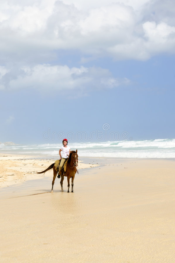 Girl riding horse on beach stock photography