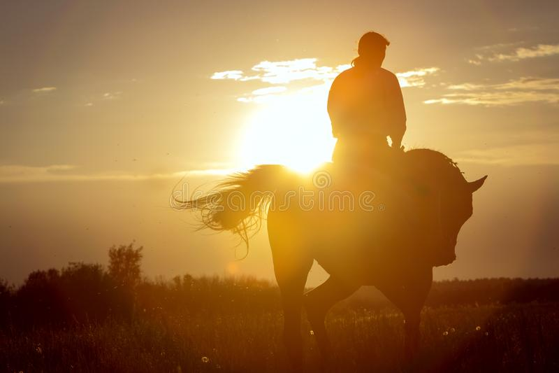 A girl riding a horse goes into the sunset against the background of the sun stock photography
