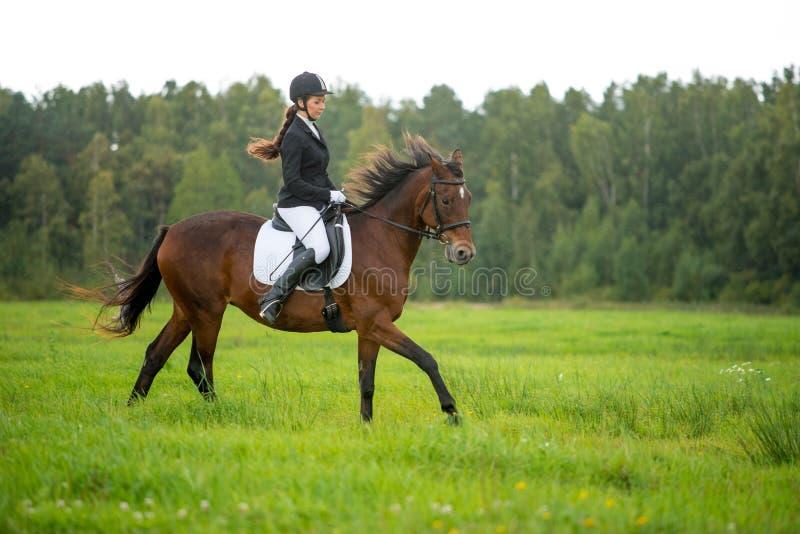 Girl riding horse. Young girl riding her brown horse outdoors royalty free stock photos