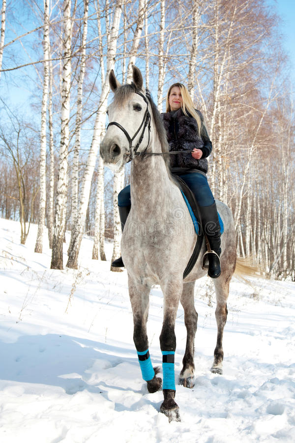 Girl riding on pale horse sunny winter. Girl riding on pale horse in sunny winter birch forest royalty free stock image