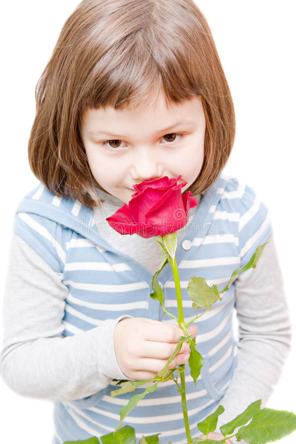 Girl with a rose stock images