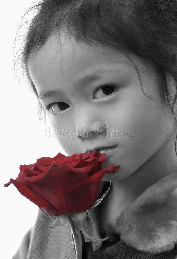 Girl with a rose 2 royalty free stock photo
