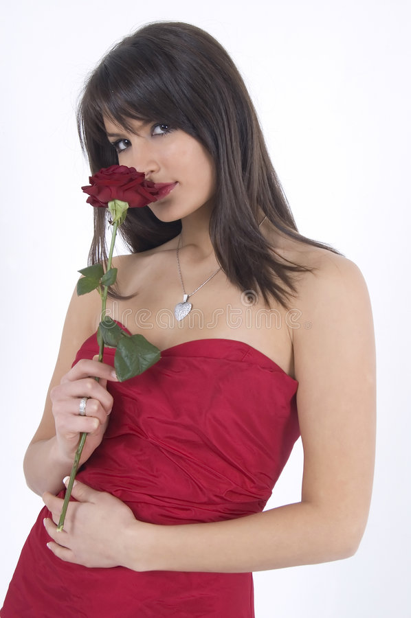 Download Girl and rose stock photo. Image of cute, adult, lady - 4156564