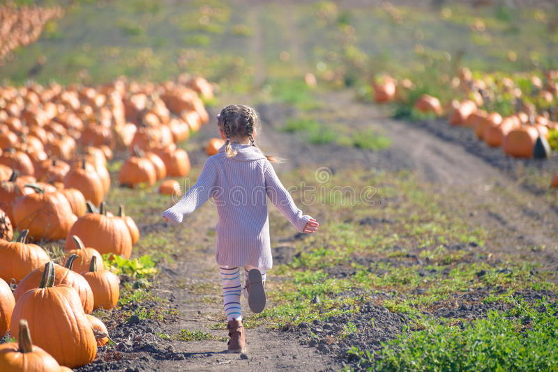 Girl running on the field to choose pumpkin at the farm. Happy girl in knitted sweater running on the field to choose pumpkin at the farm stock images