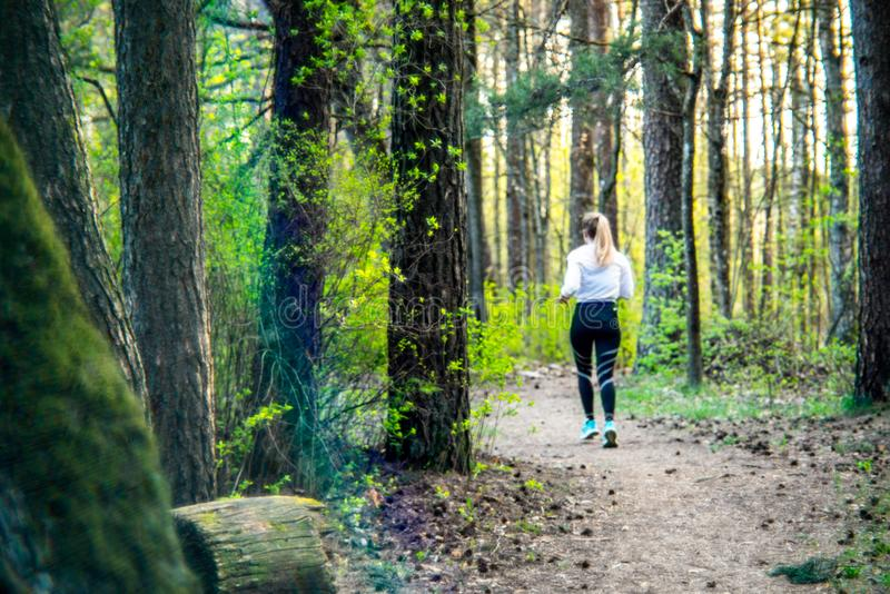 Girl jogging in forest sunset spring. Girl running in forest park at sunset spring stock image
