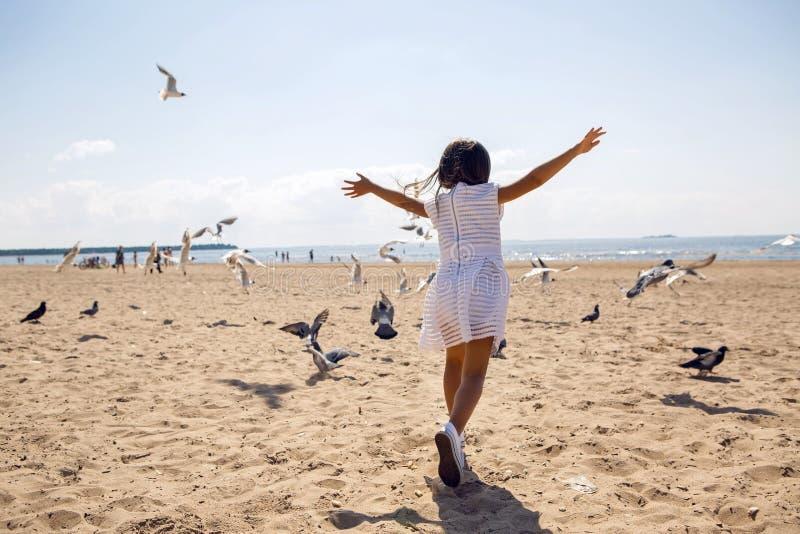 Girl runs on the beach dispersing birds seagulls stock image