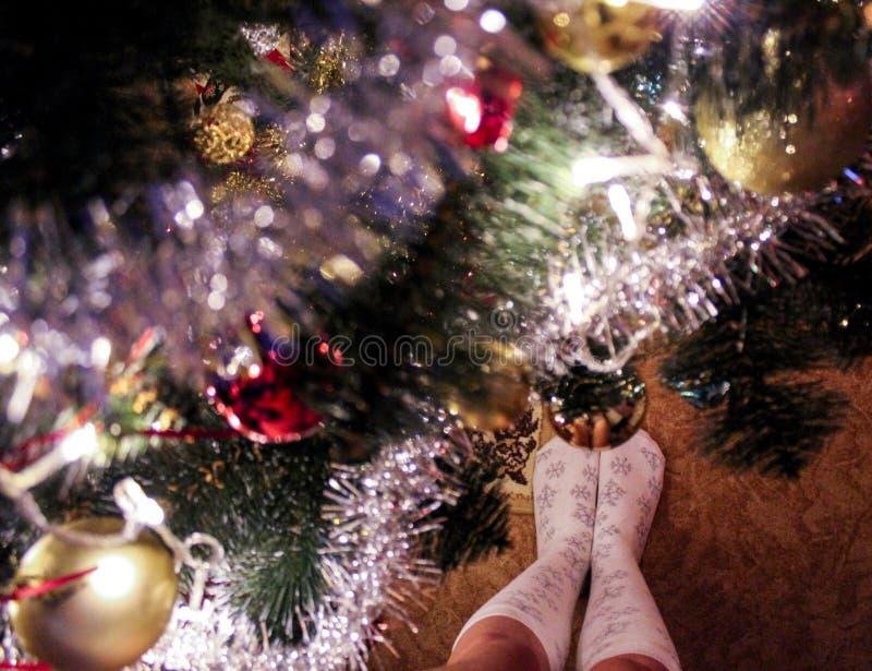 Girl`s legs near christmas tree stock photos
