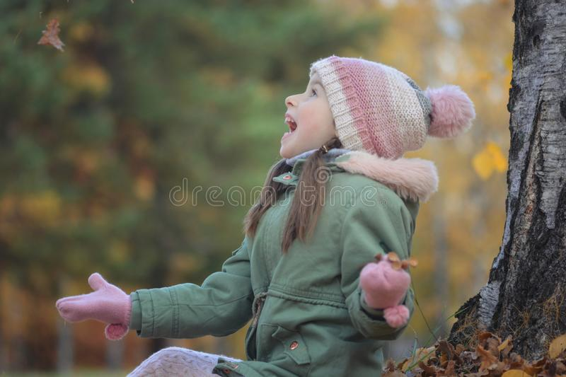 Girl`s portrait in autumn park stock image