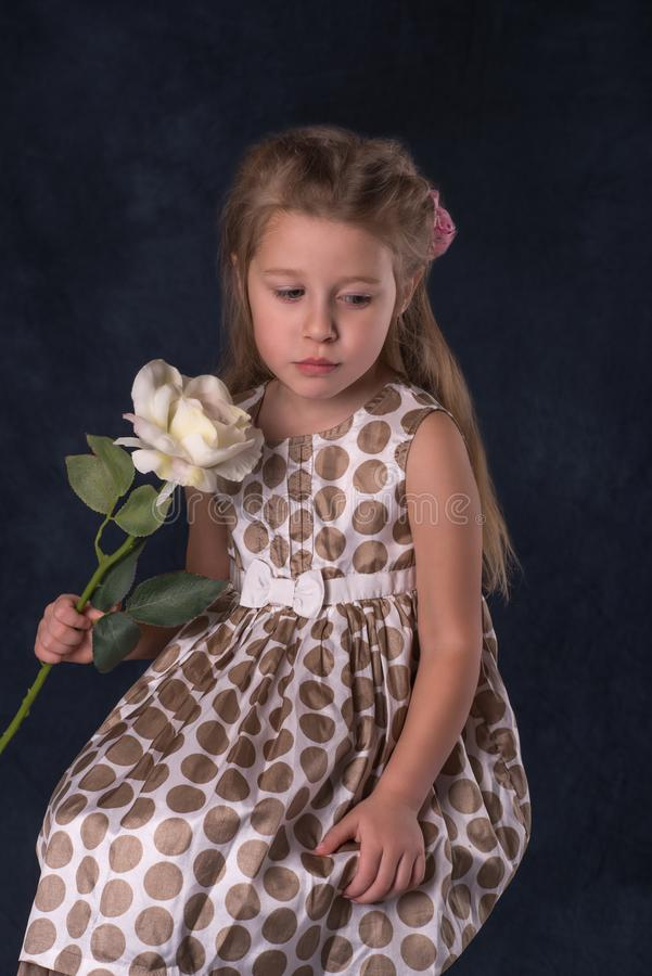 The girl`s portrait with a flower. On dark background stock photography