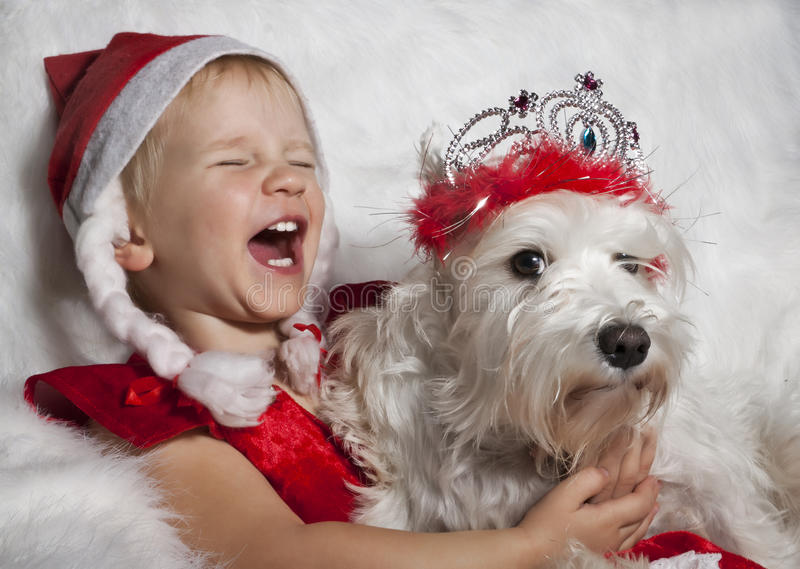 Girl in Santa's cap with white dog stock photos