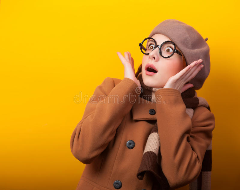 Girl in scarf and coat stock image