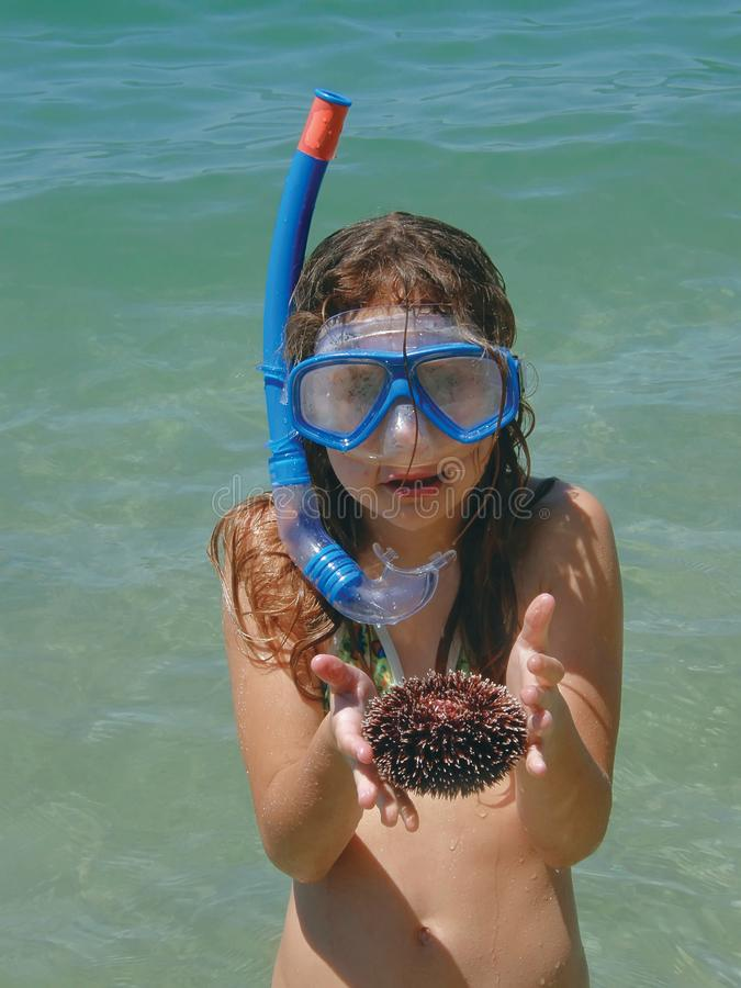 Girl with sea urchin royalty free stock photo