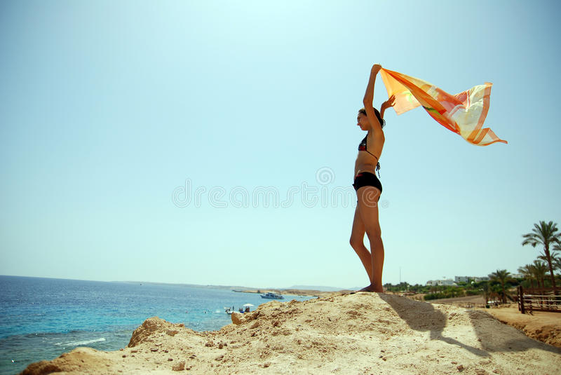 Download Girl at the seaside stock image. Image of holiday, palm - 11806385