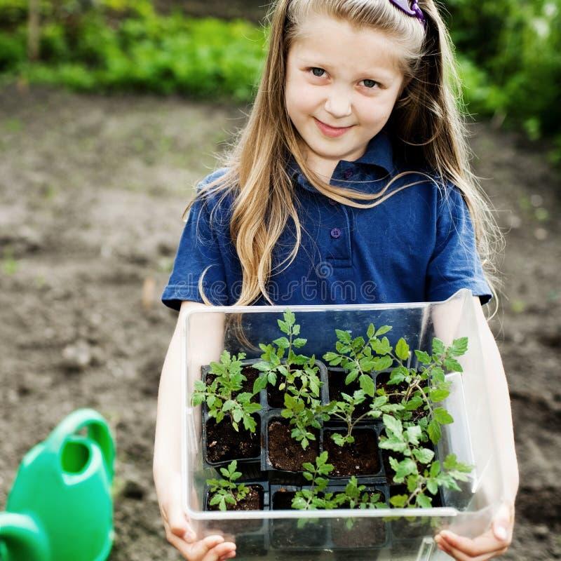 Girl with seedlings stock image