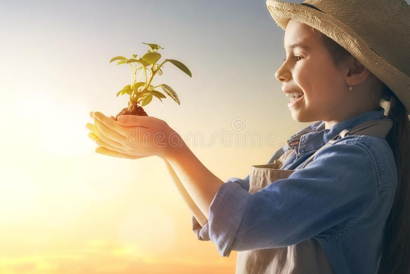 Girl with seedlings royalty free stock photos