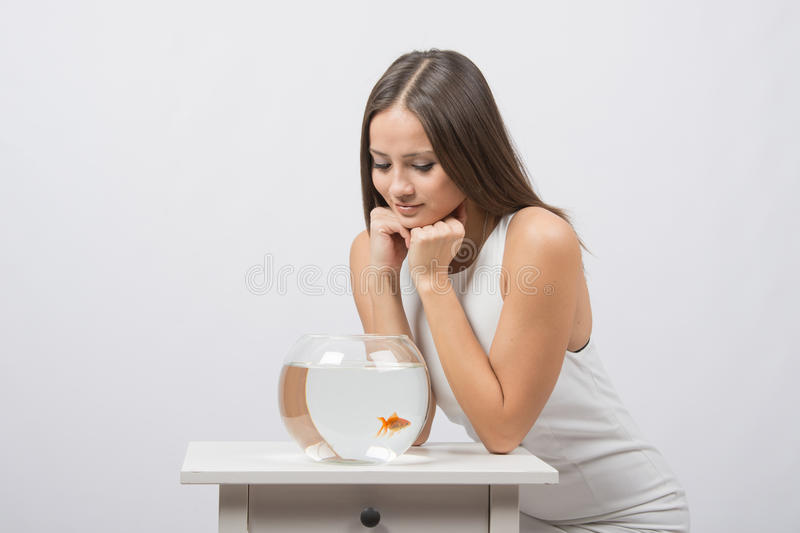 The girl sits near the aquarium with goldfish and looks at it. A young girl sits next to a round aquarium in which swimming goldfish royalty free stock photography