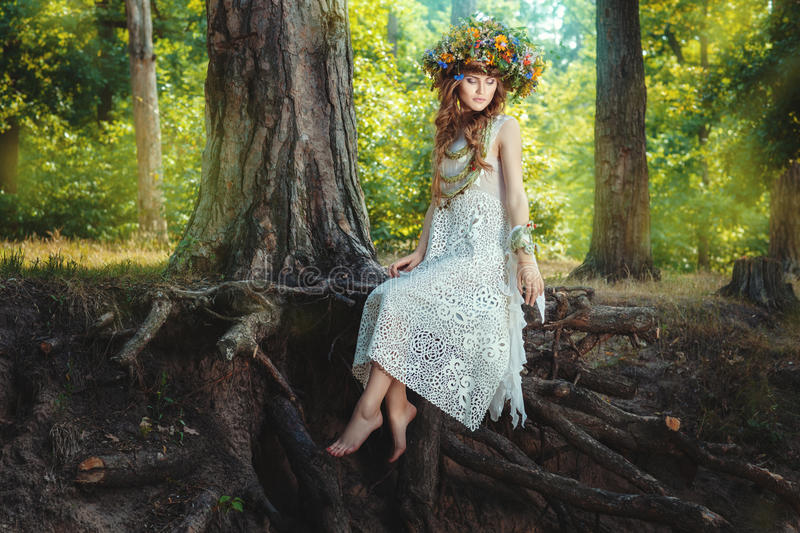 Girl sits on a tree in the fairy forest. royalty free stock photos