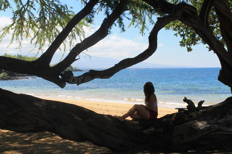 A girl sitting on a branch by the ocean royalty free stock photography