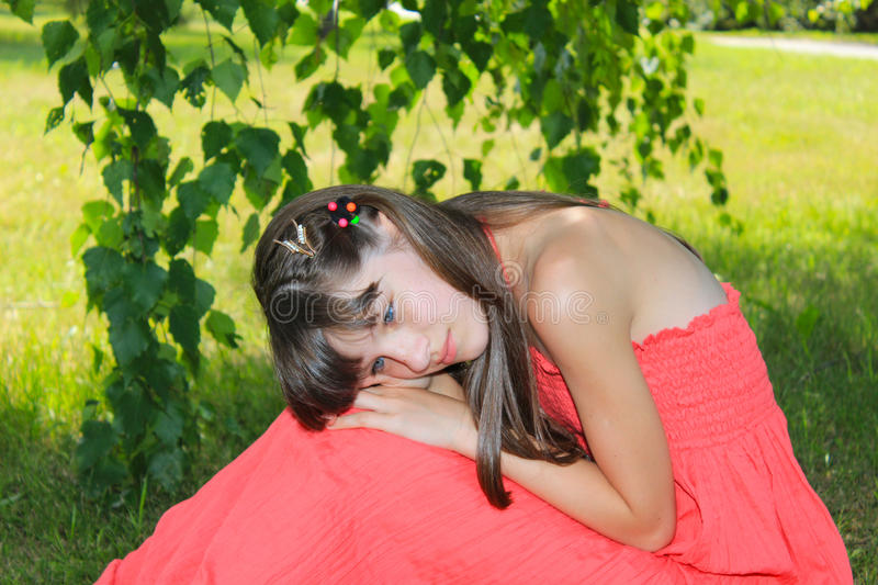 Girl sitting with his head on a birch royalty free stock image