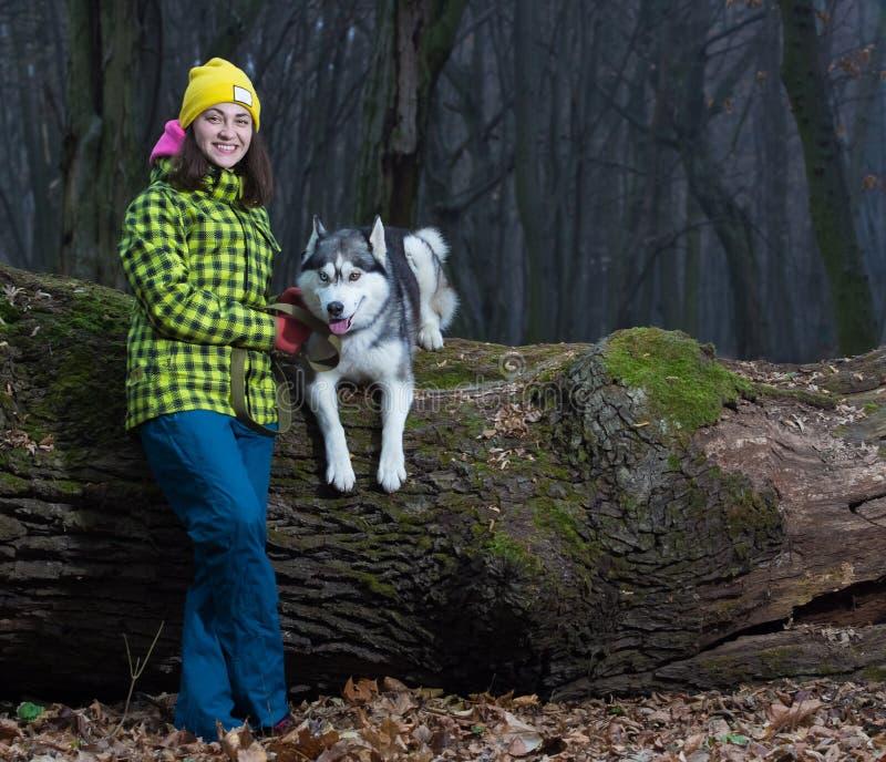 Girl sitting with husky dog stock photography
