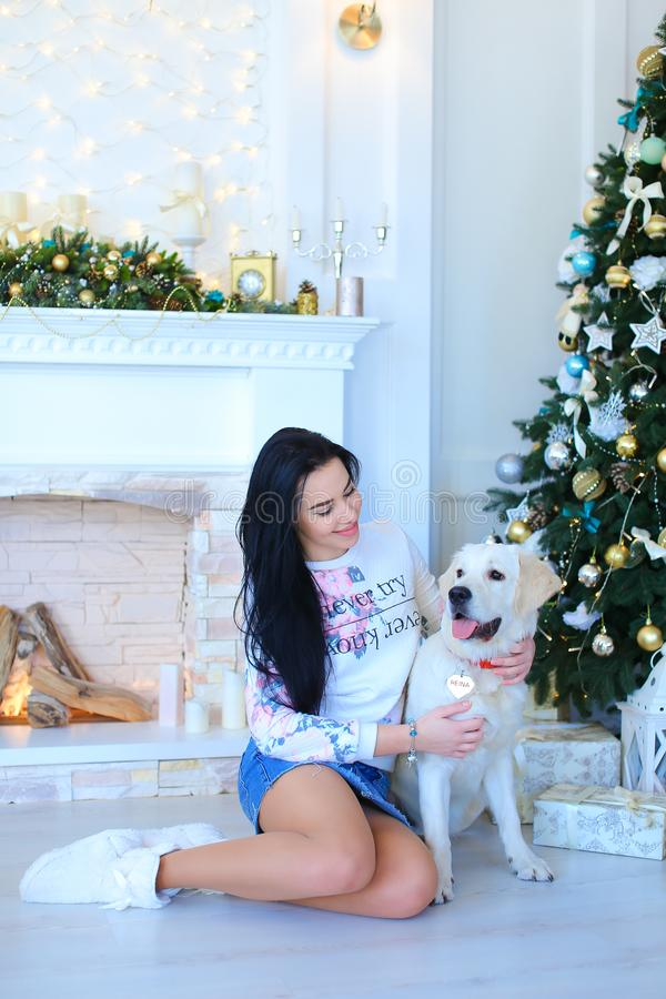 Girl sitting with white labrador near decorated fireplace and Christmas tree. stock images