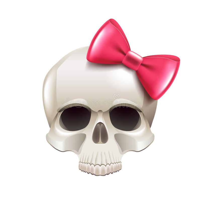 Girl skull with pink bow isolated on white vector stock illustration