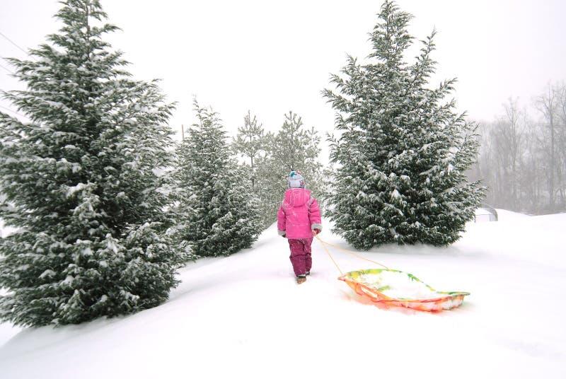 Download Girl with sled stock image. Image of seasonal, christmas - 204029