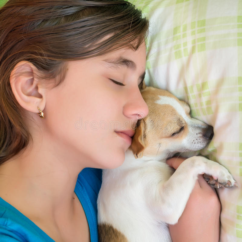 Girl sleeping with her dog. Close-up portrait of a cute girl sleeping with her little chihuahua dog stock image