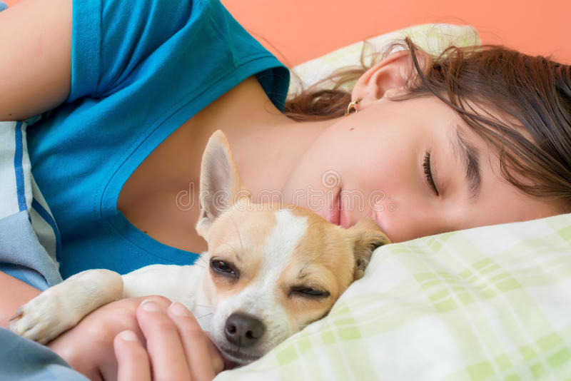 Girl sleeping with her dog. Cute girl sleeping with her little chihuahua dog stock images