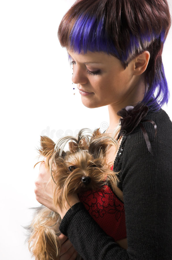 Download The  girl and small dog stock photo. Image of hair, glamour - 5146368
