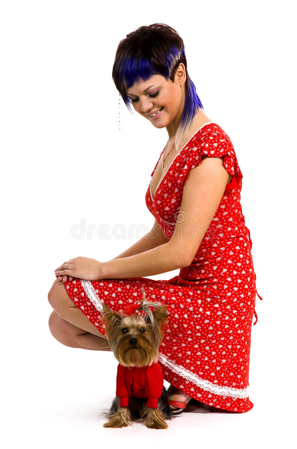 Download The  girl and small dog stock image. Image of hair, animals - 6533551