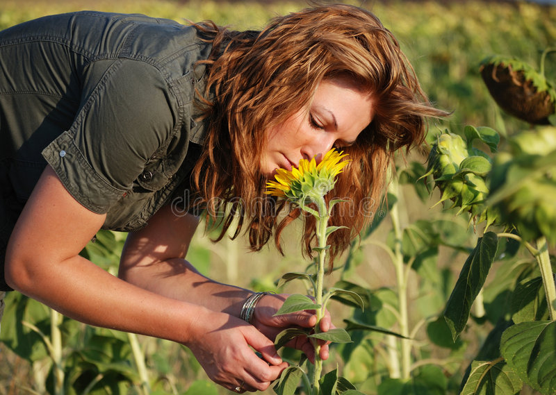Girl Smell Sunflower 2 Royalty Free Stock Photo