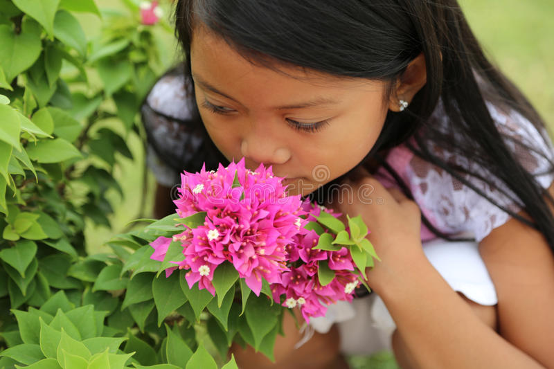 Girl Smelling Flower. Beautiful minority girl smelling bright pink Bougainvillea flowers royalty free stock photos