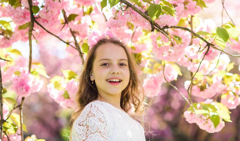 Girl on smiling face standing near sakura flowers, defocused. Girl with long hair outdoor, cherry blossom on background. Perfume and fragrance concept. Cute royalty free stock photography