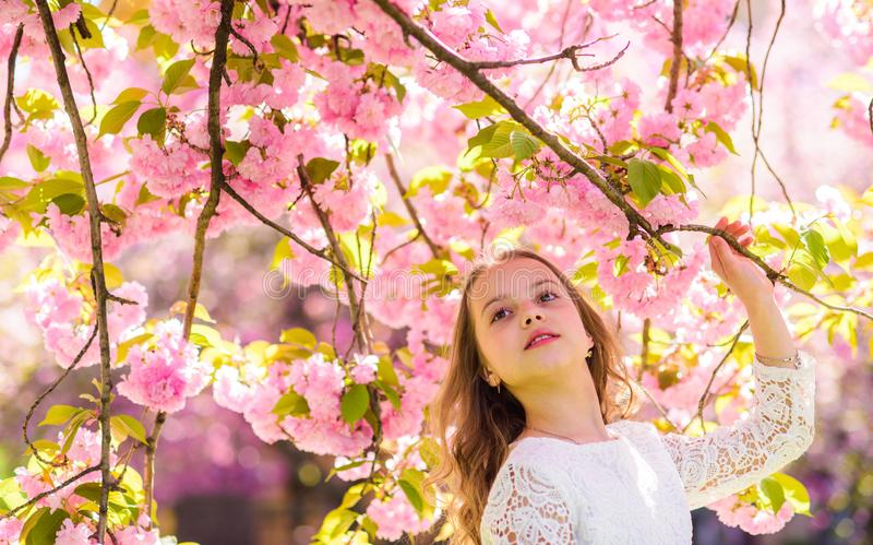 Girl on smiling face standing near sakura flowers, defocused. Girl with long hair outdoor, cherry blossom on background. Sweet childhood concept. Cute child stock photo