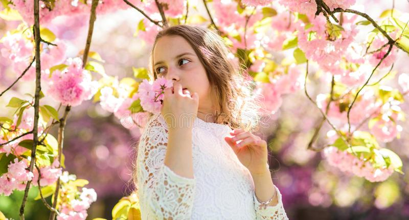 Girl on smiling face standing near sakura flowers, defocused. Girl with long hair outdoor, cherry blossom on background. Cute child enjoy aroma of sakura on stock photos
