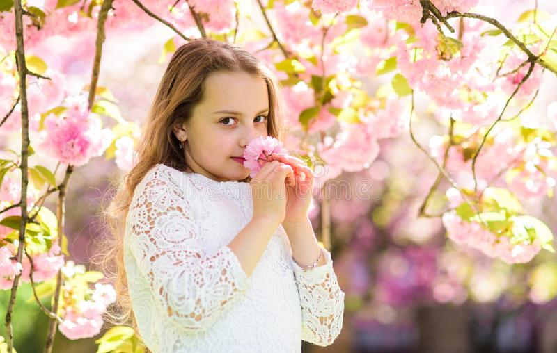 Girl on smiling face standing near sakura flowers, defocused. Perfume and fragrance concept. Girl with long hair outdoor. Cherry blossom on background. Cute stock photo