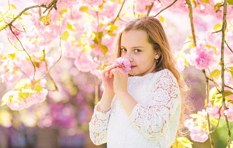 Girl on smiling face standing near sakura flowers, defocused. Perfume and fragrance concept. Girl with long hair outdoor. Cherry blossom on background. Cute royalty free stock images